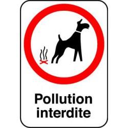 POLLUTION INTERDITE
