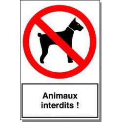 ANIMAUX INTERDITS