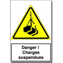 DANGER CHARGES SUSPENDUES