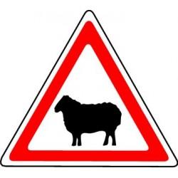 Panneau Passage d'Animaux Domestiques (Mouton)
