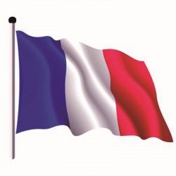 Pavillon France en Tissu maille 100% polyester 50 x 75 cm